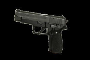 La loi sur le port d'armes à feu en Roumanie: débat sur la sécurité individuelle(1)