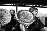 Quelle place pour la culture dans les relations Europe - Asie centrale?