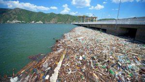 déchets plastiques chariés par le Danube dans la Mer noire