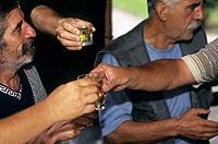 Un groupe d'amis trinquent avec du rakja ou raki ou rakia dans un parc de Skopje. Le raki est un alcool de prune, très populaire dans la région.