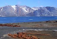 La Nouvelle-Zemble: carrefour stratégique de l'Arctique russe