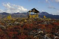 Des parcs naturels au Kamtchatka: quelle place pour l'environnement?