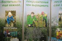 Russie: La forêt, nouvel espace d'interactions entre société civile et pouvoir
