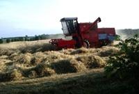 Nouvelle Politique agricole commune: Quelle carte joue la Pologne?