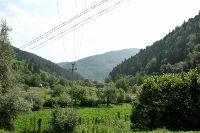 La représentation de la forêt dans les projets éducatifs en Roumanie