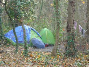 Le Bois de Vincennes, point d'ancrage des Roms et Turcs bulgares de Ruse