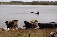 Le delta du Danube en Roumanie, un espace économique et social