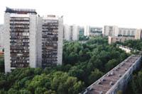 La forêt russe, une ville verte