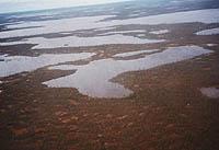 Langue et identité : des relations ambiguës chez les Nenets des forêts