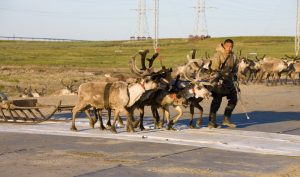 De l'eau dans le gaz pour les Nénètses de Sibérie